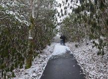 冬天远足者 库存照片