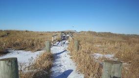 冬天道路穿过沙丘 免版税库存图片