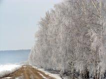 冬天道路 免版税库存照片