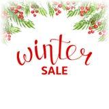冬天销售横幅模板 库存例证
