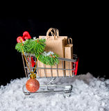 冬天销售的概念 有纸袋的购物车,绿色twi 库存照片