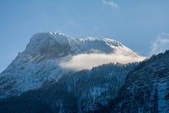 冬天阿尔卑斯 库存图片