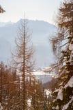冬天阿尔卑斯 免版税图库摄影