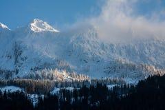 冬天阿尔卑斯 库存照片
