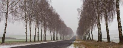 冬天降雪的空的路全景 库存图片