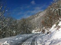 冬天雪全景风景在马其顿国家公园 库存照片