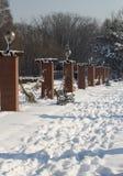冬天雪公园 免版税库存照片