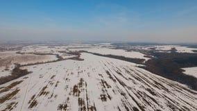 冬天雪原 33c 1月横向俄国温度ural冬天 图库摄影