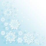 冬天雪或雪花 免版税图库摄影