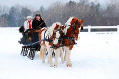 冬天雪橇乘驾 库存照片