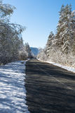 冬天雪道在森林和蓝天里 库存图片