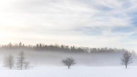 冬天雪雾,斯德哥尔摩, 库存照片