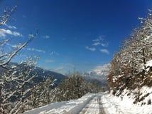 冬天雪风景在马其顿国家公园 免版税库存图片