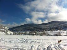 冬天雪风景在马其顿国家公园 库存图片