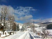 冬天雪风景在马其顿国家公园 免版税库存照片