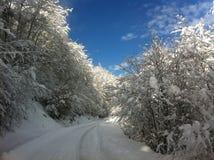 冬天雪风景在马其顿国家公园 图库摄影