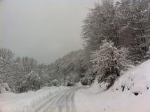 冬天雪风景在马其顿国家公园 免版税图库摄影