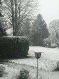 冬天雪 免版税库存图片