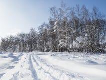 冬天零星风景 免版税库存图片