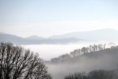 冬天雾 免版税库存图片