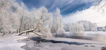 冬天鞋带:在白色口气的现实全景圣诞节风景与冰冷的河,包围由白尾鹿树和深蓝色Sk 图库摄影