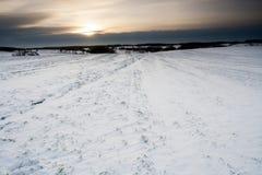 冬天领域日落 免版税库存照片