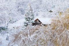 冬天风景。用雪盖的木房子树。圣诞节。 库存照片