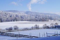 冬天风景与马的一支积雪的笔和与积雪的森林和树木繁茂的山 一张照片 免版税库存照片