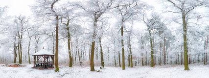 冬天风景喀尔巴阡山脉的斯洛伐克,布拉索夫 免版税图库摄影