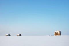 冬天风景在与清楚的蓝天和干草的晴天滚动 库存照片