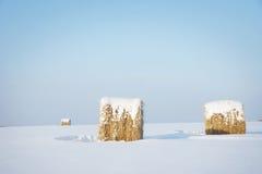 冬天风景在与清楚的蓝天和干草的晴天滚动 免版税库存图片