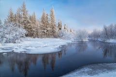 冬天风景在南雅库特,俄罗斯 库存照片