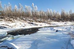 冬天风景在南雅库特,俄罗斯 免版税图库摄影