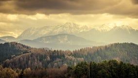 冬天风景在喀尔巴汗 免版税库存图片