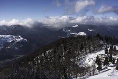 冬天风景在孚日省法国- 2017年12月 库存图片