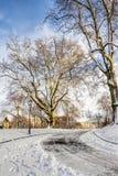 冬天风景在德累斯顿 库存照片