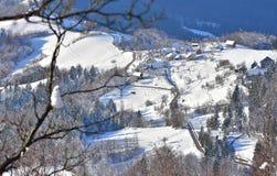冬天风景在斯洛文尼亚 从Tolsti vrh的看法 免版税库存照片