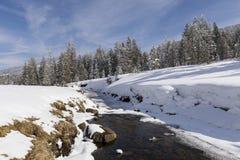 冬天风景在有多雪的树和小河的瑞士 免版税图库摄影