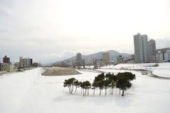 冬天风景在札幌,北海道,日本2018年 免版税库存照片
