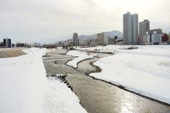冬天风景在札幌,北海道,日本2018年 免版税库存图片