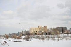 冬天风景在札幌,北海道,日本2018年 图库摄影