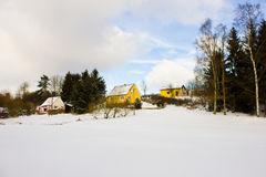 冬天风景在森林里 免版税库存照片