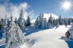 冬天风景在特兰西瓦尼亚 免版税库存照片