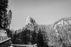 冬天风景在罗马尼亚 库存图片