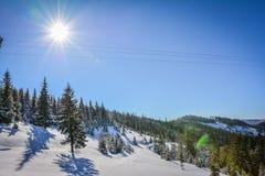 冬天风景在罗马尼亚 免版税图库摄影