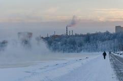 冬天风景在Kolomenskoye公园在莫斯科 免版税库存图片