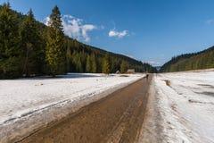 冬天风景在Tatras 库存照片