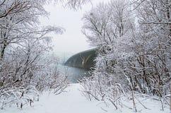 冬天风景照片 美好的雪盖树` s早午餐和地面 横跨Dnipro河的Metrosubway桥梁 免版税库存照片