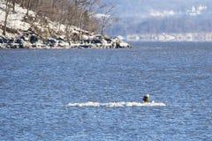 冬天风景的哈得逊河 免版税库存照片