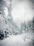 冬天风景葡萄酒照片与多雪的冷杉木的 免版税库存照片
